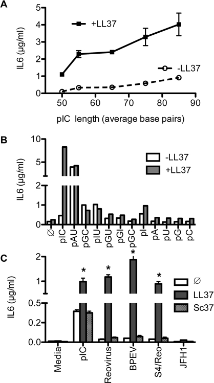 Effects of homopolymeric RNAs and viral dsRNA on IL6 production by BEAS2B cells.A) LL37 enhancement of IL6 production increased with increasing length of poly(I:C). Size-selected poly(I:C) was added to BEAS2B cells at 0.5 µg/ml ± 2.2 µM LL37. B) Effect of homopolymeric single or double-stranded RNAs on TLR3 signaling. BEAS2B cells were either untreated () or induced by the single or double-stranded RNAs (0.5 µg/ml) ± LL37 (2.2 µM). Culture media were harvested 24 h after ligand addition and IL6 levels in the medium were quantified by ELISA. C) LL37 significantly enhanced IL6 production induced by viral dsRNAs. The dsRNAs were the genomic RNAs from Reovirus, extracts of plants expressing high levels of the Bell pepper endornavirus (BPEV), and Reovirus-derived S4 dsRNA (S4/Reo). The ssRNA from Hepatitis C virus JFH1 served as a control. Where present, LL37 and Sc37 were both at a final concentration of 2.2 µM. *Indicates p<0.05 compared to RNA ligand alone.