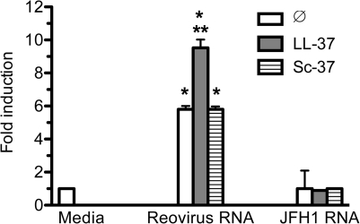 LL37 enhanced dsRNA-induced signaling in 293T cells transiently expressing TLR3.16 h after transfection with plasmids to express TLR3 and the luciferase reporters, reovirus dsRNA or JFH1 ssRNA (both at 1 µg/ml) was added to the media of the transfected cells ± 2 µM of LL37 or Sc37. The cells were analyzed for luciferase activity 20 h after induction using the normalized ratio of firefly/Renilla luciferase activities. The data are presented as fold induction over media control. Each bar shows mean (±SEM) of three independent experiments and the results are representative of more than five independent experiments. *Indicates p<0.05 compared to basal level of reporter activity while ** indicates p<0.05 compared to reporter activity in the presence of reovirus dsRNA.