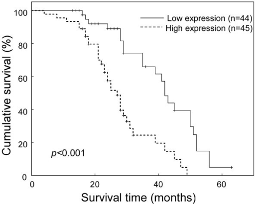 Kaplan-Meier curves with univariate analyses (log-rank) for patients with low SOX9-expressing (bold line) versus high SOX9-expressing tumors (dotted line). The cumulative 3-year survival rate was 65.9% in the low SOX9 expression group (n = 44), whereas it was only 24.5% in the high SOX9 expression group (n = 45).