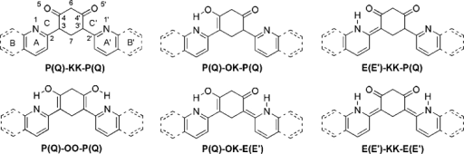 The most stable tautomeric forms of 1–3. Following abbreviations were used for the respective moieties: P – pyridine, Q – quinoline, E and E' – 1,2-dihydropyridine (enamine), K − ketone, O – enol