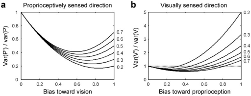 Variance reduction through sensory coupling.Relative variances of biased proprioceptively (a: var(P')/var(P)) and visually (b: var(V')/var(V)) sensed spatial characteristics, such as directions, are plotted against the proportional bias toward the other modality, vision and proprioception, respectively. Var(P') and var(V') are the variances of the biased directions, whereas var(P) and var(V) are the variances of the unbiased directions based only on proprioception and vision, respectively. The relative variances are plotted as a function of bias for different ratios of var(V)/var(P) (0.2 to 0.7). Equations are given in Appendix (Text S1). Note that sensory coupling serves to reduce variability (a, b) to a minimum at an intermediate bias, and a weak coupling (small bias) does so even for the more precise visually sensed spatial characteristic (b).
