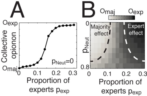 Which attractor dominates when the majority effect and the expert effect apply simultaneously?(A) The evolution of collective opinion when varying the relative proportion of experts pExp, holding an opinion Oexp and a high confidence level Cexp = 6, and the proportion of people in the majority group pmaj holding an opinion Omaj and a low confidence level randomly chosen in the interval Cmaj = [1 3]. Here, the number of neutral individuals is fixed to pNeut = 0. (B) Phase diagram showing the parameter space where the majority or the expert effects applies, when increasing the proportion of neutral individuals pNeut holding a random opinion and a low confidence level randomly chosen in the interval Cuni = [1 3]. The schematic regions delimited by black or white dashed lines show the zones where the collective opinion converges toward the majority or the expert opinion, respectively. In the transition zone, the collective opinion converges somewhere between Oexp and Omaj. In some rare cases, the crowd splits into two groups or more.