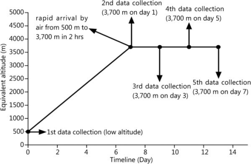 Data collection schedule. This research utilized an all-around design on selected young Chinese men for the test condition. The test conditions were defined as LA (500 m, Control group) for baseline testing and abrupt exposure to 3,700 m after approximately a week at LA.