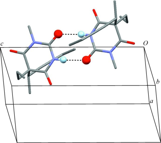 The N—H⋯O=C hydrogen-bonded inversion dimer displaying a central (8) ring. These inter­actions (dotted lines) involve the carbonyl group at the 2-position of the six-membered ring. O and H atoms engaged in hydrogen bonding are drawn as spheres.