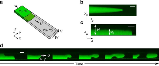 Interface dynamics in superconfinement.(a) Two colloid–polymer phases of ultra-low surface tension, γ=30 nN m−1, and different densities (ρL>ρG) and viscosities (ηL<ηG), are forced in a microfluidic channel of fixed width W=110 μm and variable thickness H=8, 10, 14, 17 μm. (b,c) The interface in the plane of the channel develops into a viscous finger (b), which adheres to the bottom plate of the channel to form a thin film (c). (d) Above a threshold driving speed, U*, the front is destabilized; the contact line, of speed V<U*, is unable to follow the rest of the interface, of speed U>U*. This mismatch gives rise to the formation of a fluid jet that releases drops periodically. Scale bars in b–d, 50, 10 and 10 μm, respectively.