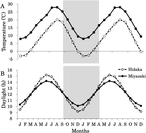 Monthly changes in the pattern of temperature (A) and daylight (B) in Hidaka (○) and Miyazaki (●) in Japan. Values are represented as means. Months are indicated by their initial letters.