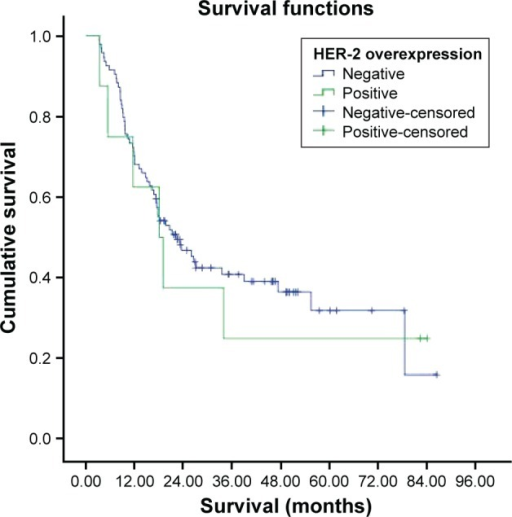 Survival curve for HER-2 overexpression groups.