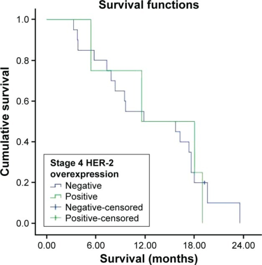 Survival curve for stage 4 HER-2 overexpression groups.