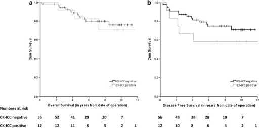 Kaplan-Meier survival curves for CK-ICC negative and CK-ICC positive patients: overall survival (a) and disease-free survival (b) in lymph node-negative patients after surgery for primary colorectal cancer