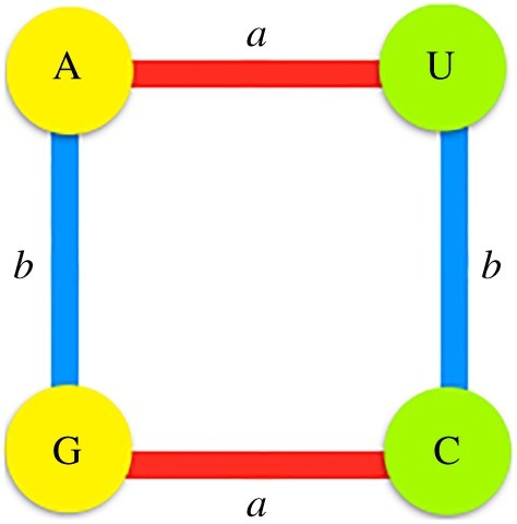 Representation of the action of the generators of the group over the set of nucleotides, where a represents transversions and b transitions. Purines are coloured in yellow and pyrimidines in green.
