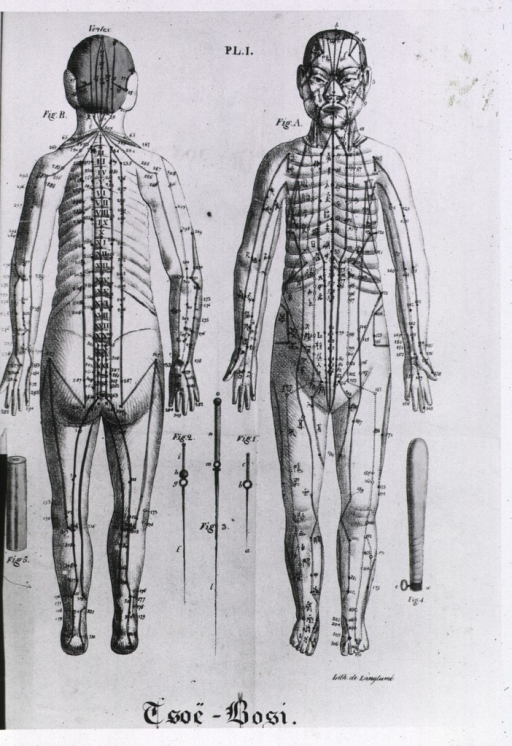 <p>Front and back views of a full length human figure with numerous acupuncture points identified; also shown are three acupuncture needles.</p>