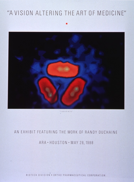 <p>Predominantly white poster with black lettering.  Title at top of poster.  Visual image is a reproduction of &quot;Labyrinth,&quot; a multicolor artwork that appears to incorporate CT scan or MRI results.  Caption immediately below artwork, note below caption.  Publisher information at bottom of poster.</p>
