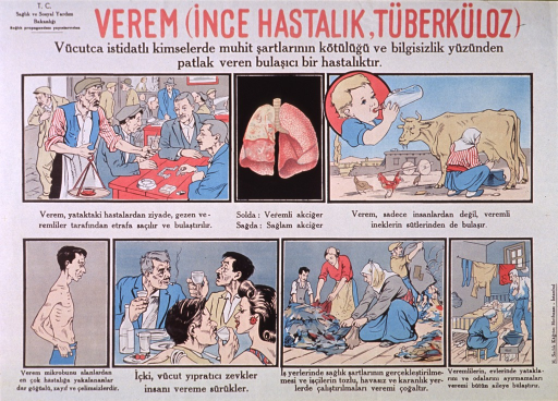 <p>Predominantly white poster with red and black lettering.  Publisher information in upper left corner.  Title at top of poster addresses the concept of tuberculosis.  Visual images are illustrations showing men in a coffee house, a pair of lungs that contrasts healthy and diseased tissue, a woman milking a cow and a baby drinking from a bottle, an emaciated man, people drinking alcohol, people picking through rags, and four people sharing a shabby room.  Text on poster appears to discuss ways in which tuberculosis is transmitted and some symptoms of the disease.  Text also addresses shame and ignorance.</p>