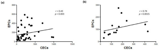 Positive correlation between endothelial progenitor cell (EPC) counts and circulating endothelial cell (CEC) counts (cells per 106 lineage-negative mononuclear cells). (a) Patients with rheumatoid arthritis. (b) Controls. Correlation coefficient r and P values are indicated.