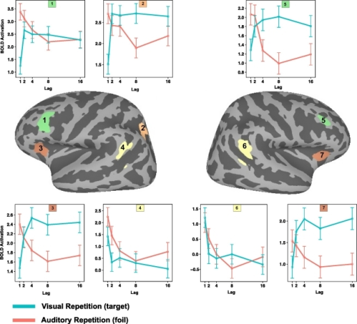 Mean level of activation as a function of lag and source modality in selected regions of interest (1–7). 1. Left dorsolateral prefrontal cortex. 2. Left intra parietal sulcus. 3. Left anterior insula. 4. Left inferior parietal lobe. 5. Right dorsolateral prefrontal cortex. 6. Right inferior parietal lobe. 7. Right anterior insula.