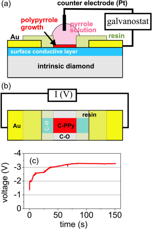 Design and electrochemical synthesis of PPy-diamond heterojunction: (a) Schematic cross-sectional drawing of experimental setup for electrochemical synthesis of PPy on diamond device structure. (b) Schematic top view of PPy-diamond device connected for electrical measurements. (c) Voltage as a function of time as detected during the electrochemical synthesis in galvanostatic regime.