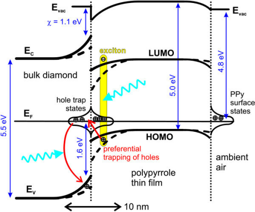 Energetic scheme of the PPy-diamond system in equilibrium in the dark (full line) and under white light illumination (dashed line).