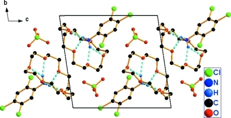 The crystal packing of the title compound, showing the H-bonding interactions. H atoms not involved in hydrogen bonding (dashed line) have been omitted for clarity.