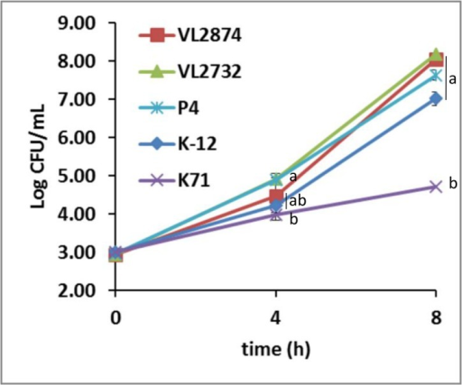 Growth rate in milk of MPEC (VL2874, VL2732 and P4), K-12 MG1655 and the environmental, non-mammary pathogenic strain K71.Error bars show SD of triplicate experiments. Statistically significant differences at the same time point are indicated by letters.