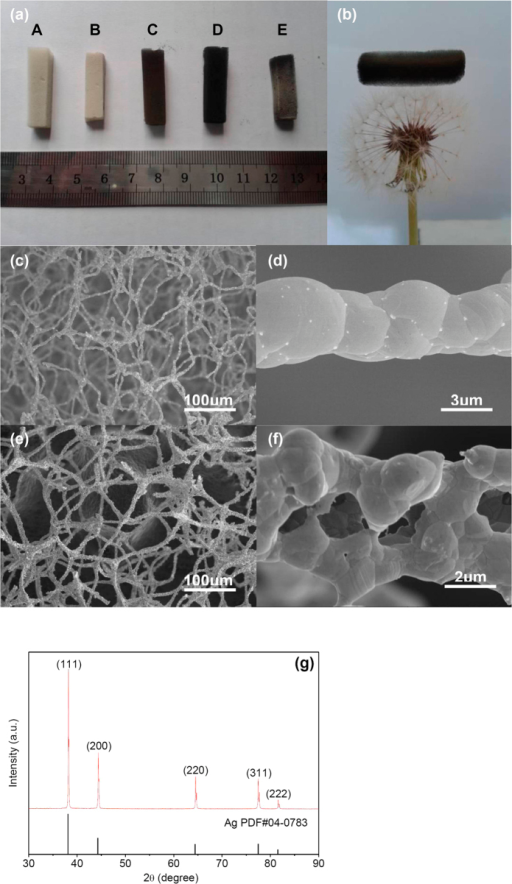 Macroscopic and microscopic structures of ultralight metal foams.(a) Digital photograph of ultralight metal foams: (A) the polymer template acquired after the silver mirror reaction; (B) Ag foam; (C) Ni foam; (D) Co foam; (E) Cu foam. (b) A piece of ultralight Ni foam with the density of 7.4 mg/cm3 supported on a dandelion. (c) Low-magnification SEM image of the Ag foam. (d) Highly magnified image of a filament of the Ag foam. (e) SEM image of the Ag foam with hollow filaments. (f) The hollow filament of Ag foam. (g) XRD patterns of the Ag foam.