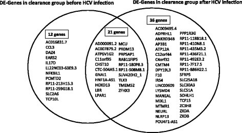 Intersectional analysis of the differentially expressed genes before and after HCV infection in clearance group and Chronic group. The diagram was generated with the statistical differentially expressed genes between clearance group and chronic group before and after HCV infection