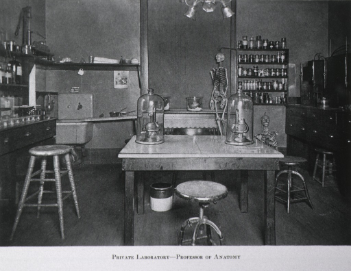<p>Interior view: in the center of the room are two microscopes under glass on a table; cabinets line the walls; there are paraffin ovens, incubators, paraffin and celloidin microtomes, and other apparatus and materials; two skeletons are against the back wall.</p>