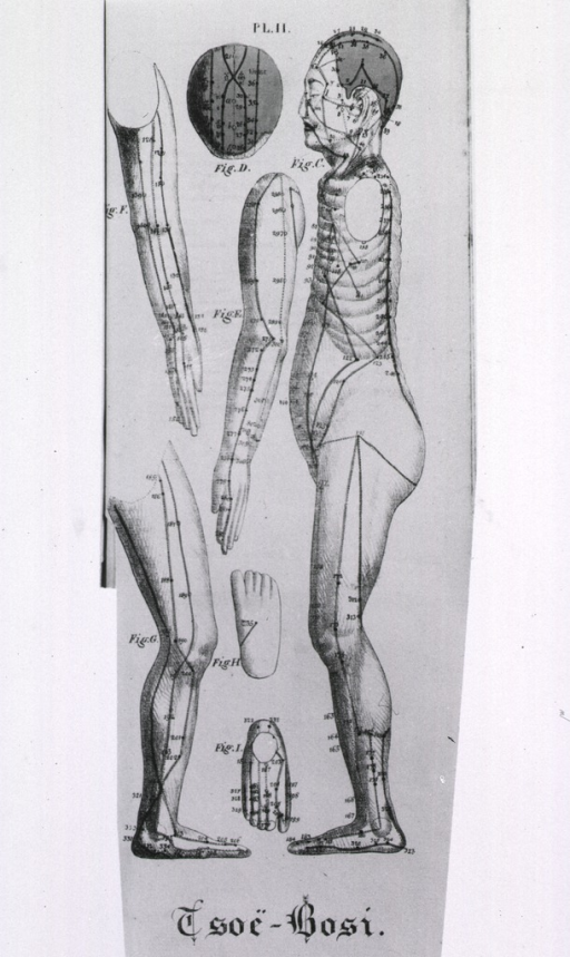 <p>Full length human figure shown in left profile with acupuncture points indicated; also shown are separate views of the top of the head, the arms, legs, and the top and bottom of a foot.</p>
