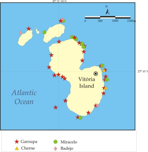 Fishing spots used to catch groupers, dusky grouper and other Epinephelus (cherne, mero), and Mycteroperca (badejo, miracelo or comb grouper) at Vitória Island, Parque Estadual de Ilhabela, São Paulo Coast.