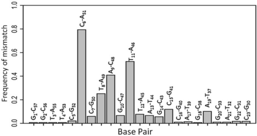 Histogram of the mismatch frequencies for the different base pairs within cTAR. Mismatch base pairs are preferentially flanking the two well-conserved G10 and G50 residues identified as directly interacting with NC(11–55). These mismatch base pairs are conserved, suggesting a critical role of the mismatches for NC recognition.