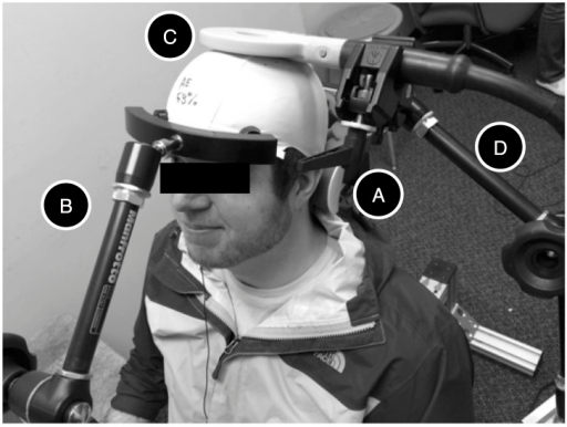 TMS Set-Up.During the experiment, the Receiver was accommodated on a BrainSight chair, with the back of the head resting against a neckrest (A) and kept in place by an adjustable arm with padded forehead prongs (B). A 90 mm circular TMS coil (C) was kept in place by an articulated arm (D). During the experiment, the receiver wore noise-cancellation earphones (not shown) while listening to a selection of music or to an audiobook of his/her own choice.
