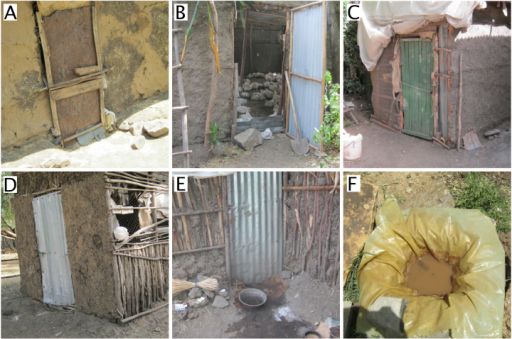 Examples of chicken housing on semi-intensive holdings in and around Debre Zeit, Ethiopia. Materials used in construction made cleaning and disinfection impractical. Footbaths were only used on 2 of the 30 semi-intensive production premises (pictures E and F) and in both cases were unlikely to be effective.