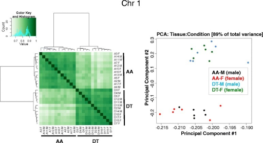 Correlation heatmap and Principal Component Analysis (PCA) distinguishes site-specific DMRs in both male (M) and female (F) tissues. Correlation heatmap and PCA plot (generated with the R bioconductor package DiffBind) based on the DMRs between AA and DT are illustrated for chromosome 1. Similar heatmaps and plots for all 18 somatic chromosomes are shown in Additional file 1: Figure S2