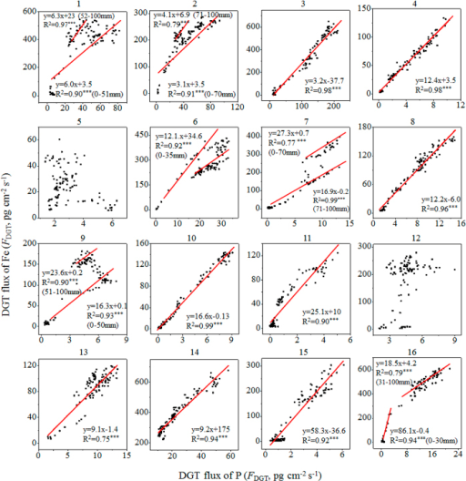 Correlation analysis between DGT-labile Fe and P.