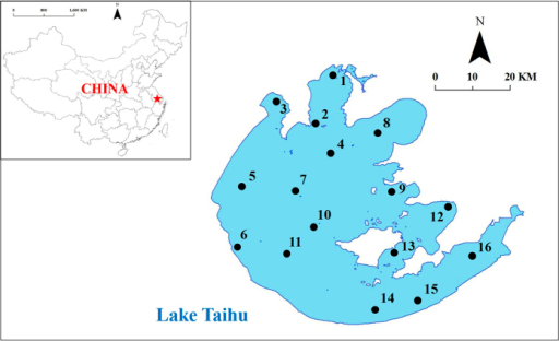 The distribution of sampling sites in Lake Taihu.The map is Reprinted (adapted) with permission from46. Copyright (2009) American Chemical Society.