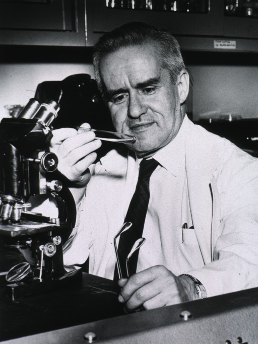 <p>Head and shoulders, full face, seated at lab counter behind a microscope, examining contents of a test tube, wearing a lab coat.</p>