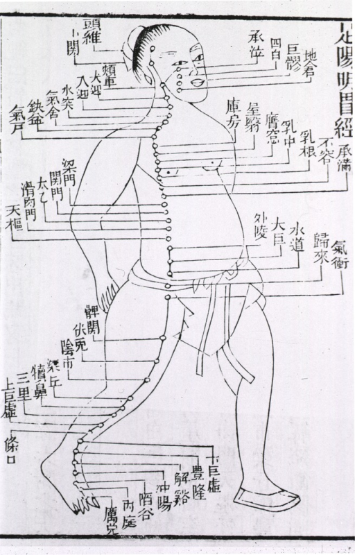 <p>Full length Oriental figure with acupuncture points and meridian in Chinese characters for stomach and foot disorders.</p>