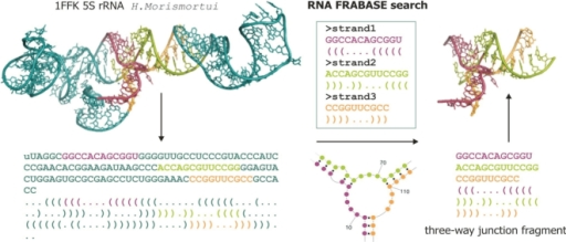 The encoding and searching concept of the RNA FRABASE presented for the Haloarcula marismortui 5S rRNA structure (PDB code 1FFK).