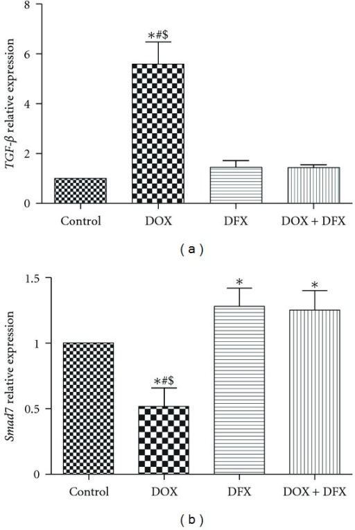 Effect of DOX, DFX, and their combination on the expression levels of TGF-β (a) and Smad7 (b) in rat heart tissues. Data are presented as mean ± SD (n = 10). *, # and $ indicate significant change from control, DFX and DOX plus DFX, respectively, at P < 0.05.