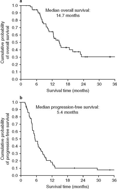Efficacy analysis: Kaplan–Meier curves for (a) overall survival and (b) progression-free survival.