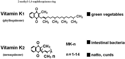 Naturally occurring forms of vitamin K—Phylloquinone (vitamin K1) and menaquinones (vitamin K2).