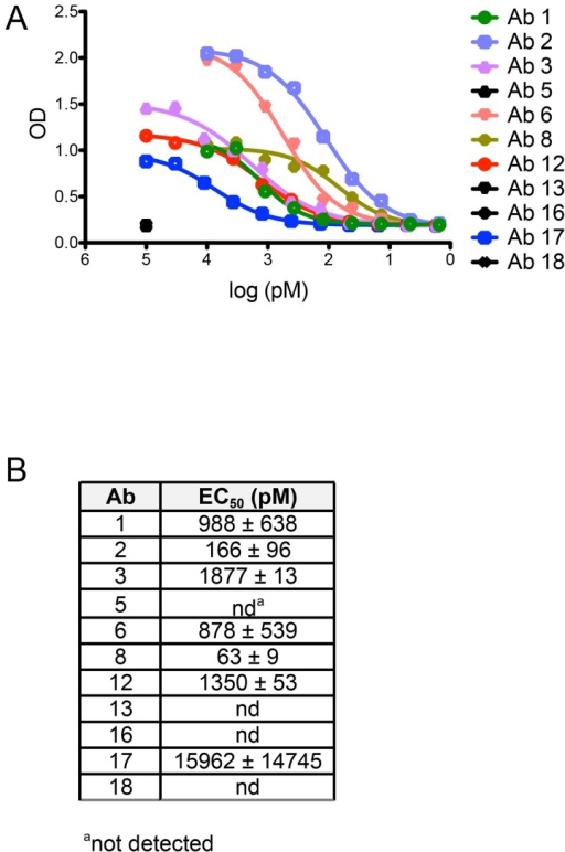 Non-neutralizing human mAbs 5, 13, 16, and 18 do not bind to HPV 16 psV.Each Ab cloned and expressed in this study was evaluated for binding to HPV 16 psV over a broad dilution range in an ELISA. (A) Representative binding curves from one experiment are plotted with optical density (OD) on the y-axis and Ab dilution on the x-axis. (B) Table summarizing the mean half-maximal binding concentrations, or EC50 values (± SD from two or more experiments), measured for Ab binding to HPV 16 psV. EC50 values were calculated using a non-linear regression model.