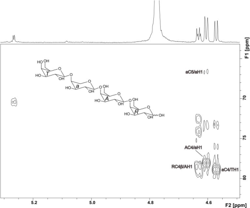 HMBC spectrum and structure of compound 2. Diagnostic long range correlations are marked and explained in the text.