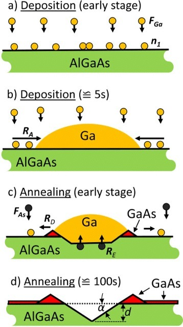 Schematic representation of the different steps of a Ga on AlGaAs droplet etching process. (a) Planar deposition of Ga with flux FGa yielding an increase of the Ga adatom density n1. Ga droplets are nucleated by collisions between diffusing Ga adatoms. (b) Droplet shape establishment with increasing coverage and increase of the droplet volume by adatom attachment with rate RA. (c) Etching and removal of substrate material by As diffusion with rate RE and droplet material detachment with rate RD during post-growth annealing. The detached Ga atoms crystallize a thin GaAs layer with background As of flux FAs. (d) Final hole with depth d and side-facet angle α surrounded by a GaAs wall.