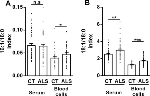 SCD indices are higher in ALS patients than in control subjects.(A) Palmitoleate to palmitate ratio (16:1/16:0) in serum and blood cells from ALS patients (ALS) and control subjects (CT). (B) Oleate to stearate ratio (18:1/18:0) in serum and blood cells from ALS patients (ALS) and control subjects (CT). *p<0.05, **p<0.01, ***p<0.001 (Mann-Withney test, n = 48).