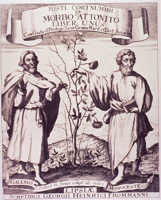 <p>Hippocrates (on the right) and Galen are standing beside each other; between them is a bush, where Hippocrates touches the bush it is in flower, whereas Galen's side is nothing but thorns.</p>