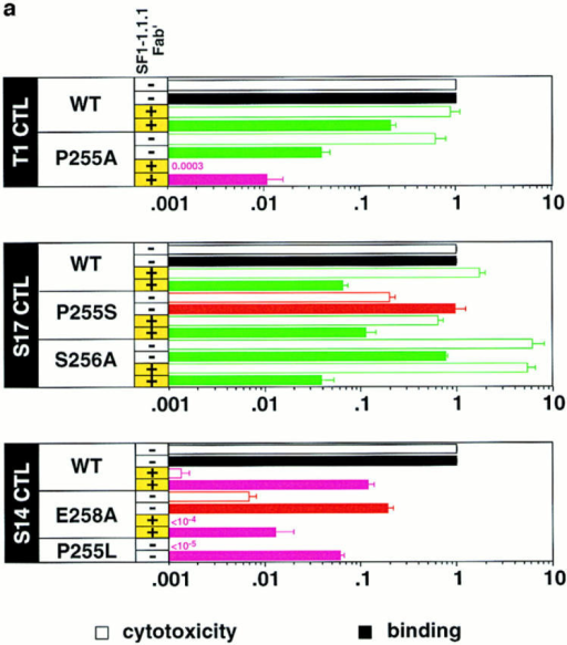 Antigen recognition, IFN-γ production and TCR-ligand  binding for IASA-YIPSAEK(ABA)I (wt) and variants on cloned CTL.  The normalized relative antigenic activities (cytotoxicity) and TCR-ligand binding at 26°C are shown as open and full bars, respectively (a),  and the IFN-γ production as open bars (b). All values were normalized  relative to IASA-YIPSAEK(ABA)I. The cases for which the CTL response was ⩾5-fold lower than TCR-ligand binding are shown in red  and those for which it was ⩾5-fold higher in green. TCR antagonists are  shown in purple. The variants tested include IASA-YIASAEK(ABA)I  (P255A), IASA-YIPSAAK(ABA)I (E258A), IASA-YISSAEK(ABA)I  (P255S), IASA-YIPAAEK(ABA)I (S256A), IASA-YILSAEK(ABA)I  (P255L), and the CTL clones T1, S14, and S17. Some of the experiments  were performed in the presence of SF1-1.1.1 Fab′. Each experiment was  performed in triplicates and the mean values and standard deviations were  calculated from at least two experiments.