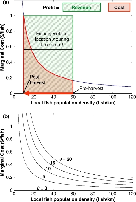 Stock effect curve(s) estimating marginal cost relative to local fish population density. (a) Schematic representation of the calculation of fishery profit at one location during a single harvest season, as a function of revenue based on a fixed market price ($1) per fish unit, minus the sum of the marginal costs of harvesting down the local fish population. In this example the fishery harvested to the 'zero marginal profit' level, where (marginal revenue)/(marginal cost) = 1. (b) Stock effect curves representing fishery species that are of different marginal costs to harvest. Increasing values of θ represent fishery species that are intrinsically more expensive to harvest.