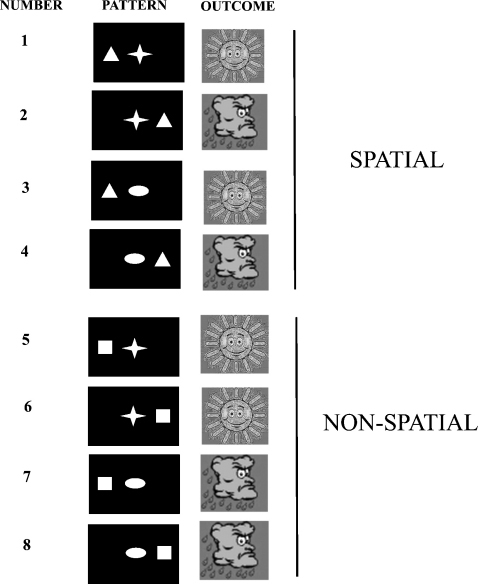 "Experimental design: subjects were instructed to play the role of a weather forecaster, and try to learn over the course of the experiment how different ""patterns"" of shapes on the screen were associated with one of two outcomes, sun or rain (see Section 2). Each one of the eight patterns was associated with an outcome in a deterministic fashion (i.e. with 100% probability). In patterns 1–4, the position of the triangle determines the outcome (in this example, although the allocation of shapes to outcomes was changed between subjects). Hence when the triangle appears on the left, the outcome is sun regardless of the shape present in the centre. When the triangle appears on the right, the outcome is always rain. In patterns 5–8, specific shape–shape pairings determine the outcome, with the position of the square being irrelevant. Hence, square together with star is associated with sun, regardless of the position of the square. Conversely, square together with ellipse is always associated with rain. Trials could therefore be divided conceptually into those involving learning of spatial (patterns 1–4), as opposed to non-spatial (patterns 5–8), configural associative information."