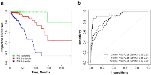 Survival and Survival ROC curves for the Risk Score. (a)Kaplan-Meier outcome-free survival curves by risk score tertiles; (b) the Risk Score's ROC curves for predicting ESRD at 24 months, 60 months and 120 months.