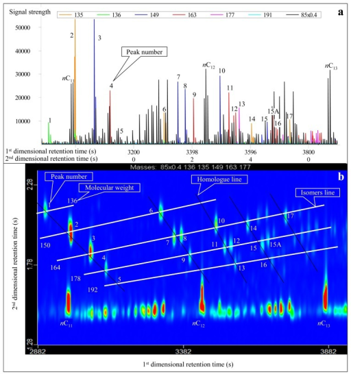 Real second-dimensional chromatogram (a) and GC×GC-TOFMS contour plot (b) of adamantanes identified in the condensate from Well DX 10 by GC×GC-TOFMS analysis under normal phase column system. The compounds are listed in Table 1.